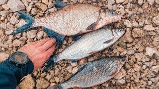 Трудовая рыбалка на фидер. Вкусный обед на рыбалке.