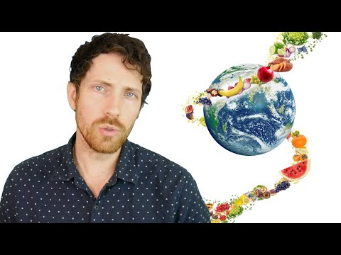 How the Planet Would Transform on a Vegan Diet