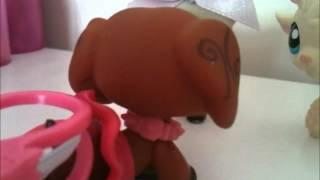 Littlest Pet Shop:That Girl #1