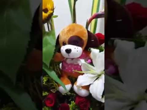 Arreglos Florales Y Peluches 311 3449921 Floristeria Kesef