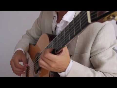 Guitar music for hotels, restaurants, wedding ceremonies and events - Charleston & Miami
