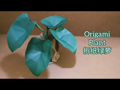 Origami Elephant Ear Plants/ Big Green Leaves 折纸绿萝