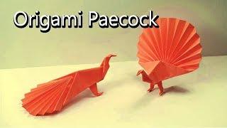 যেভাবে কাগজ দিয়ে খুব সহজে ময়ূর বানাবেন | How to make a paper Peacock