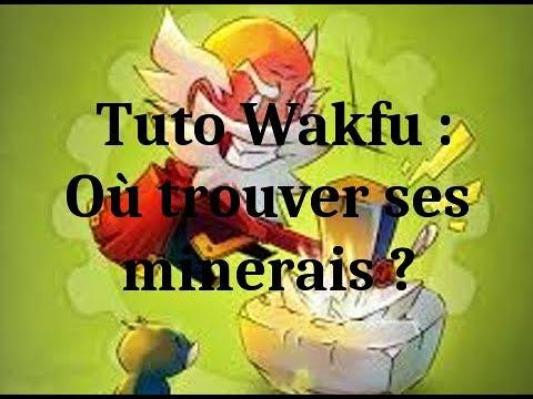[Tuto] Wakfu : Où Récolter Ses Minerais ? (Partie 1)