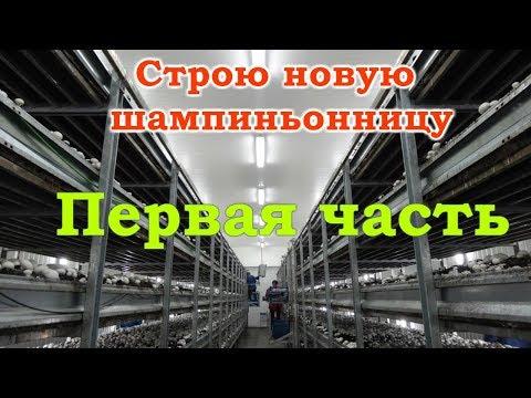 выращивание грибов вакансии