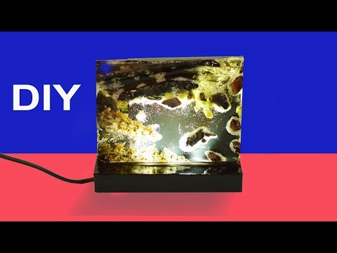 Night Lamp with Resin and Wood   Make a Wood and Resin Lamp   Resin under water DIY Lamp