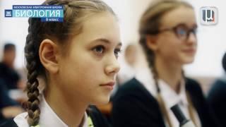 Московская электронная школа: уроки с использованием электронных сценариев, часть 1