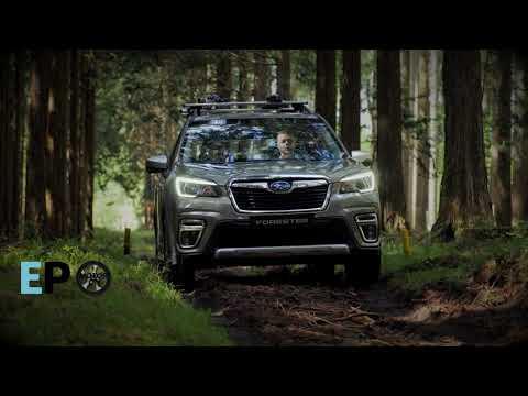 Así es el Subaru Forester