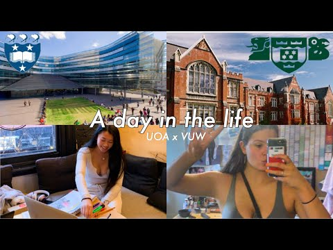 student life in Auckland vs Wellington New Zealand (vlog style)