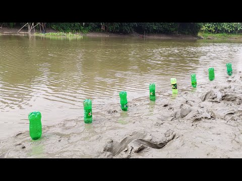 Unbelievable Fishing Video   Incredible way to Hunting Fish by Plastic Bottle   Just Amazing Fishing