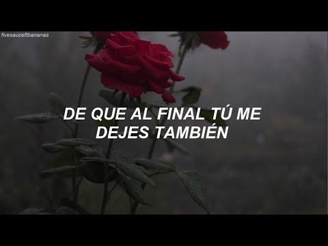 BTS & Steve Aoki - The Truth Untold (Traducida Al Español)