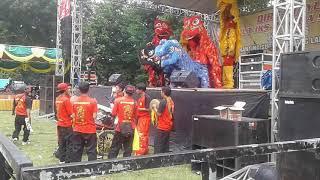 Video Atraksi Barongsai HUT IKSPI Ke-38 Ranting Sugio-Cabang lamongan download MP3, 3GP, MP4, WEBM, AVI, FLV Maret 2018