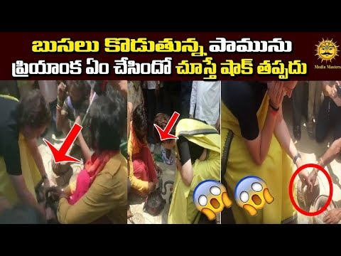 Video: Priyanka Gandhi Holds a snake at Rae Bareli Campaign | Media Masters