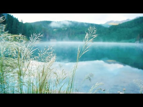 Inspiring Light Music - calm, relaxing, positive - relaxdaily N°089