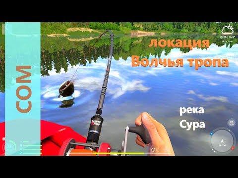 Русская рыбалка 4 - река Сура - Сом на джиг