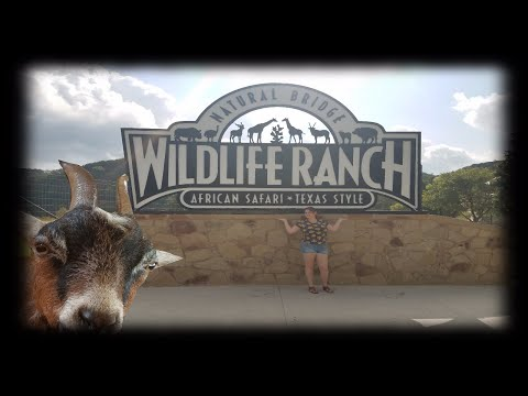 Thumbnail: African Safari!! Wildlife Ranch [San Antonio] 2017