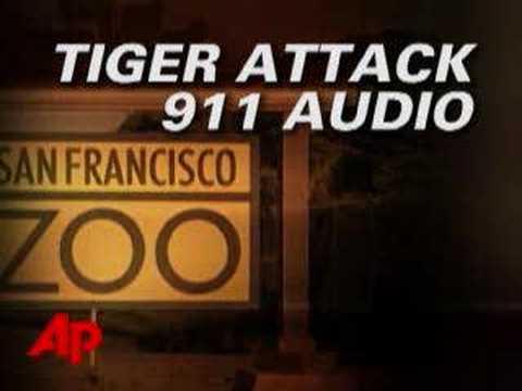 911 Audio: San Francisco Zoo Tiger Attack - YouTube