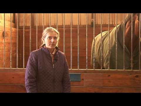 Horses Care & Grooming : Information About Leasing a Horse