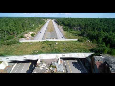 wildlife overpass south of Sudbury Hwy 69 Aug 01 2016