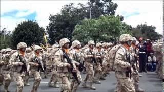 DESFILE MILITAR 20 DE JULIO 2014 BOGOTA COLOMBIA