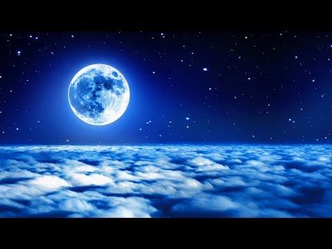 Deep Sleep Music24/7, Sleep Therapy, Insomnia, Sleep Meditation, Calm Music, Study, Relax, Sleep