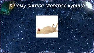 К чему снится Мертвая курица (Сонник)