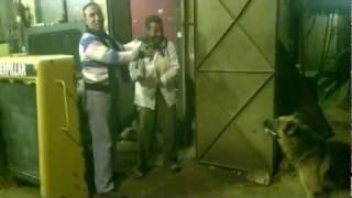رجالة مسطرد ههههههههههههههه.mp4