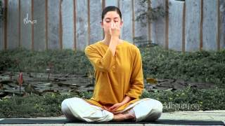 Learn Free Yoga- Invest 5 minutes for Well-Being