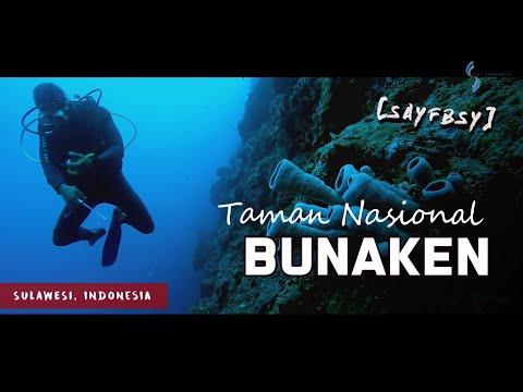 taman-nasional-bunaken:-surga-laut-di-bibir-samudra-pasifik