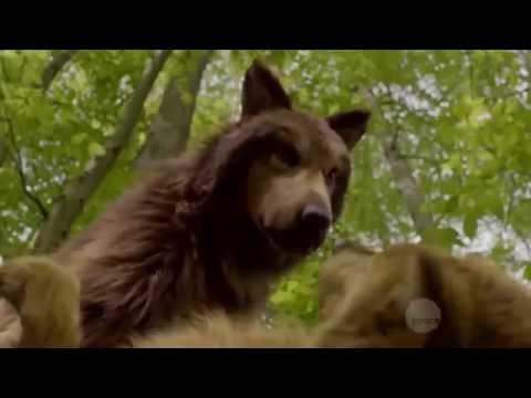 """Bitten"" TV Series - Howl"