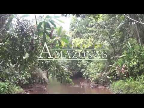 Путешествие по реке Амазонка