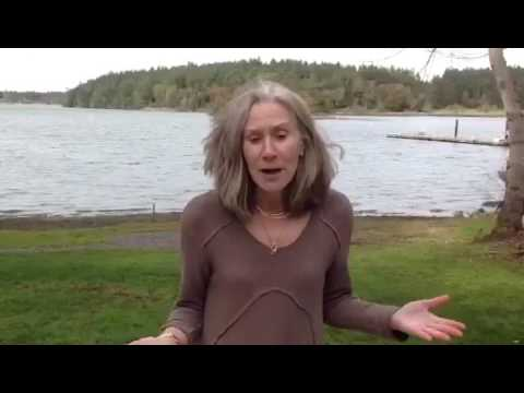San Juan Island Lifestyle Tips for the Various Type of Waterfront  Property