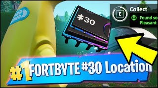 FORTBYTE 30 Location - FOUND SOMEWHERE BETWEEN HAUNTED HILLS AND PLEASANT PARK (Fortnite)