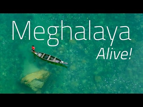 Meghalaya Alive! The Wettest Place on Earth.