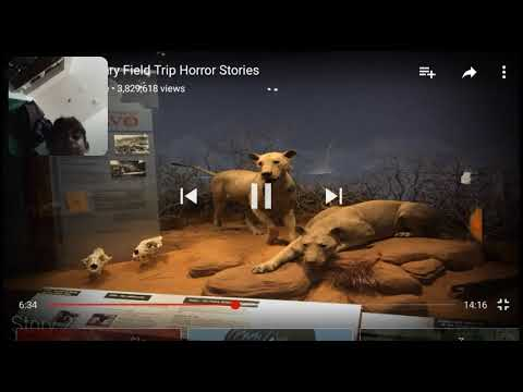 3 Horror Field Trips Youtube Nightmares that read into reality animated.ogv download. 3 horror field trips