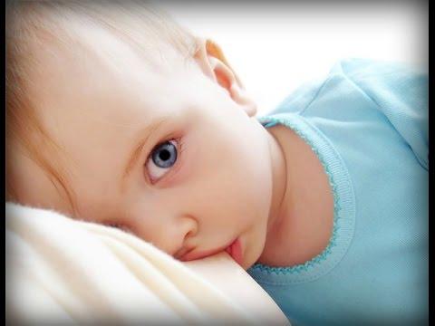 Дибикор и препарат метформин от старения — Остановить