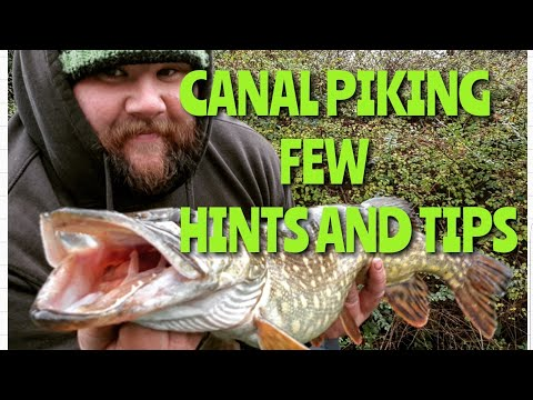 Fishing For Pike On Canals Few Hints And Tips