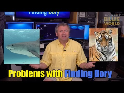 Diving Into Finding Dory | BLUE WORLD ACADEMY