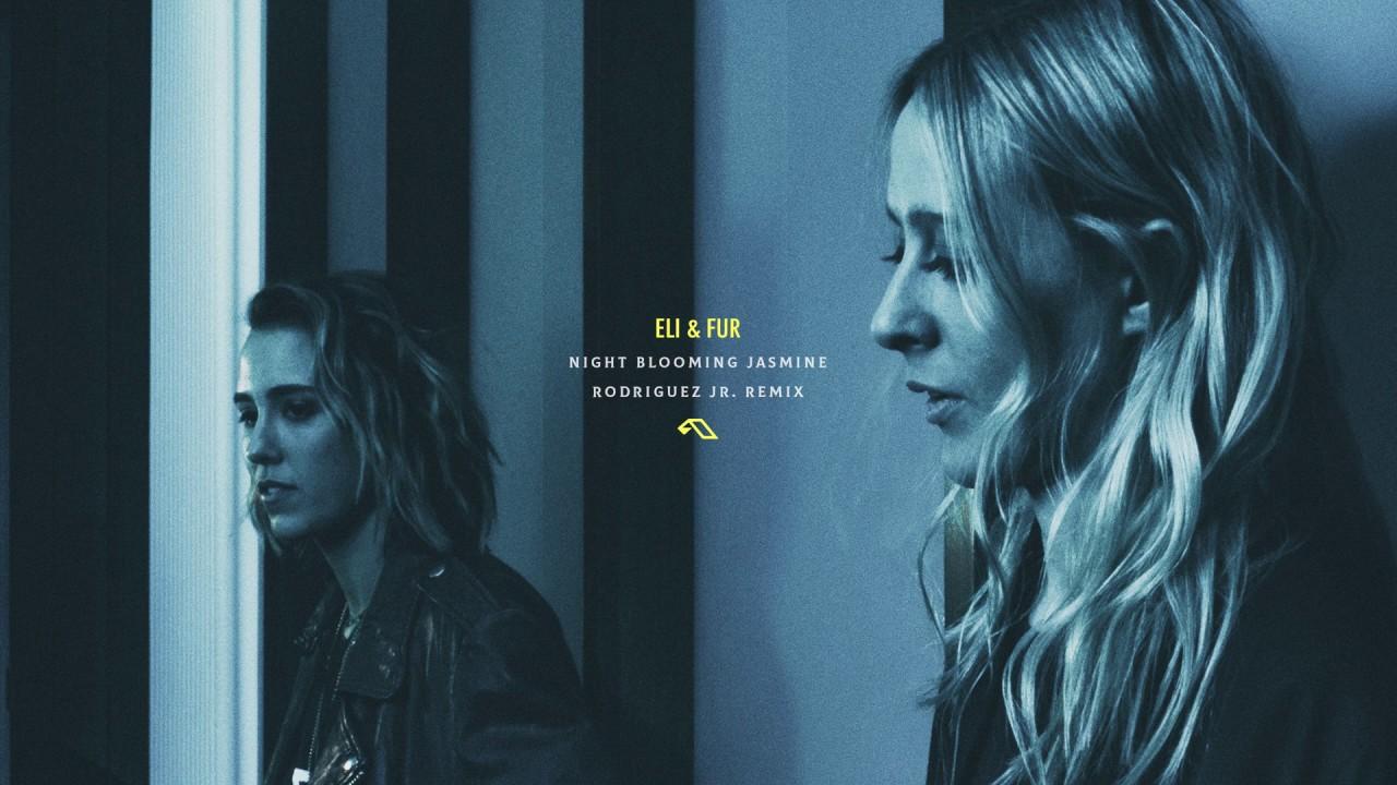Download Eli & Fur - Night Blooming Jasmine (Rodriguez Jr. Remix)
