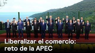 Los nuevos retos comerciales de la APEC en el Pacífico - Foro Global