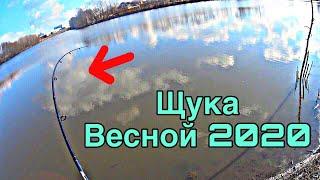 ПЕРВАЯ рыбалка ВЕСНОЙ 2020 ловля на силикон