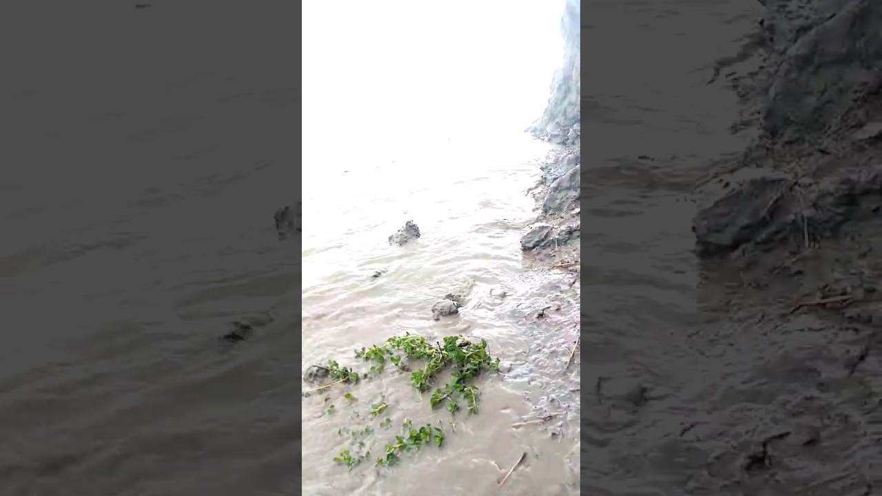 আম্ফানের তান্ডোবে লন্ডভন্ড বাংলাদেশের সর্বদক্ষিনের দ্বীপ মনপুরা
