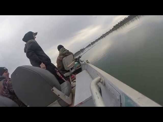 Pine Hollow Trout Fishing