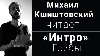 Михаил Кшиштовский читает «Интро» Грибы (Вечера поэзии)