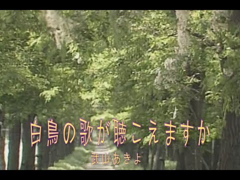 白鳥の歌が聴こえますか (カラオケ)  武山あきよ