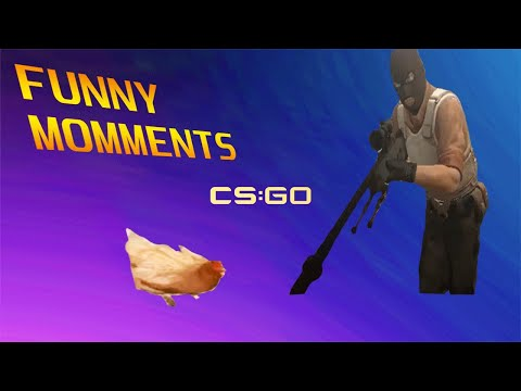 Cs Go Funny Moments Try Not To Laugh!