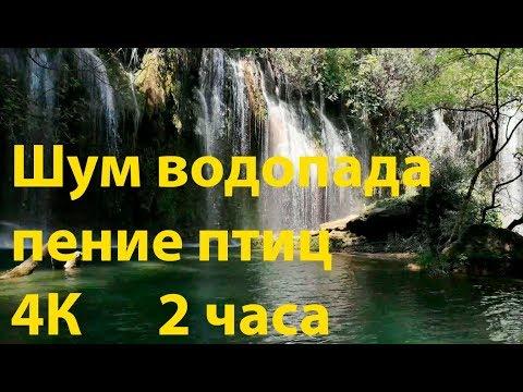 Шум водопада, пение птиц. 🐠 Красивый лесной водопад 2 часа. 🐠 4К White noise. Релакс