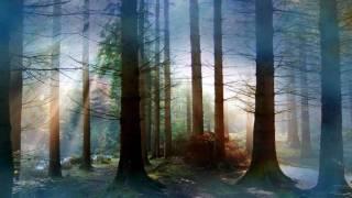 Bach Suite pour Orchestre n°3 Sarabande