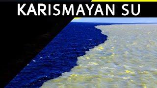 Tatlı Su Ve Deniz Suyu Karşı Karşıya Karışmıyor