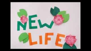 Stop Motion - New Life